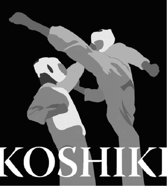 Tournoi Koshiki inter-dojo